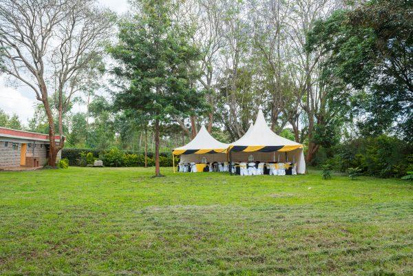 tent wedding weddings grand wedding Mount Kenya Mt. Kenya Mt Kenya Garden Gardens