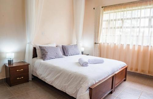 Aberdare National Park Mount Kenya National Park Mau Mau Caves Italian War Memorial Church fully equipped kitchen with modern amenities, serene and secure environment
